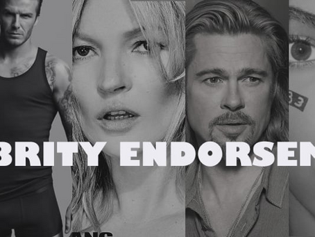 The Power of Celebrity Endorsement - Elena Corres