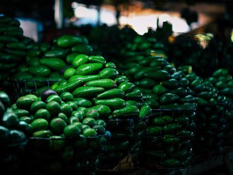 Avocados from Mexico: A Story of Organized Crime - Eyara Jokar