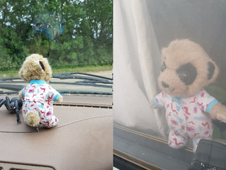 Window watching Oleg
