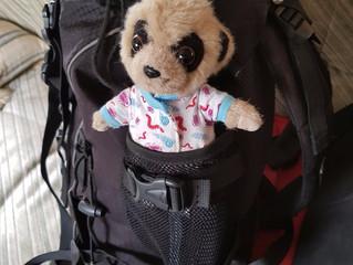 Bubba Oleg travels