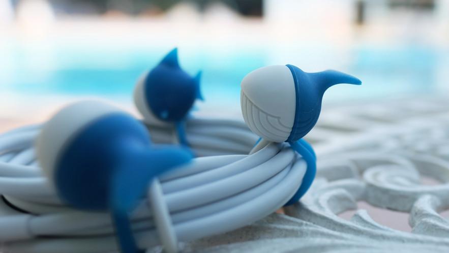 鯨魚.jpg
