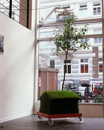 treehaus_web.jpg