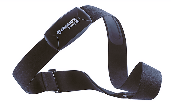 GIANT ANT+ & BLE 2 IN 1 HEART RATE BELT