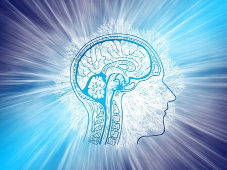 La Magia de la Estimulación Cognitiva.