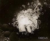 FAROWS