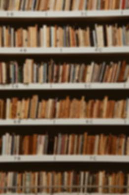 bookcase-books-bookshelves-2128249.jpg