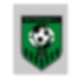 Nottingham FC.png