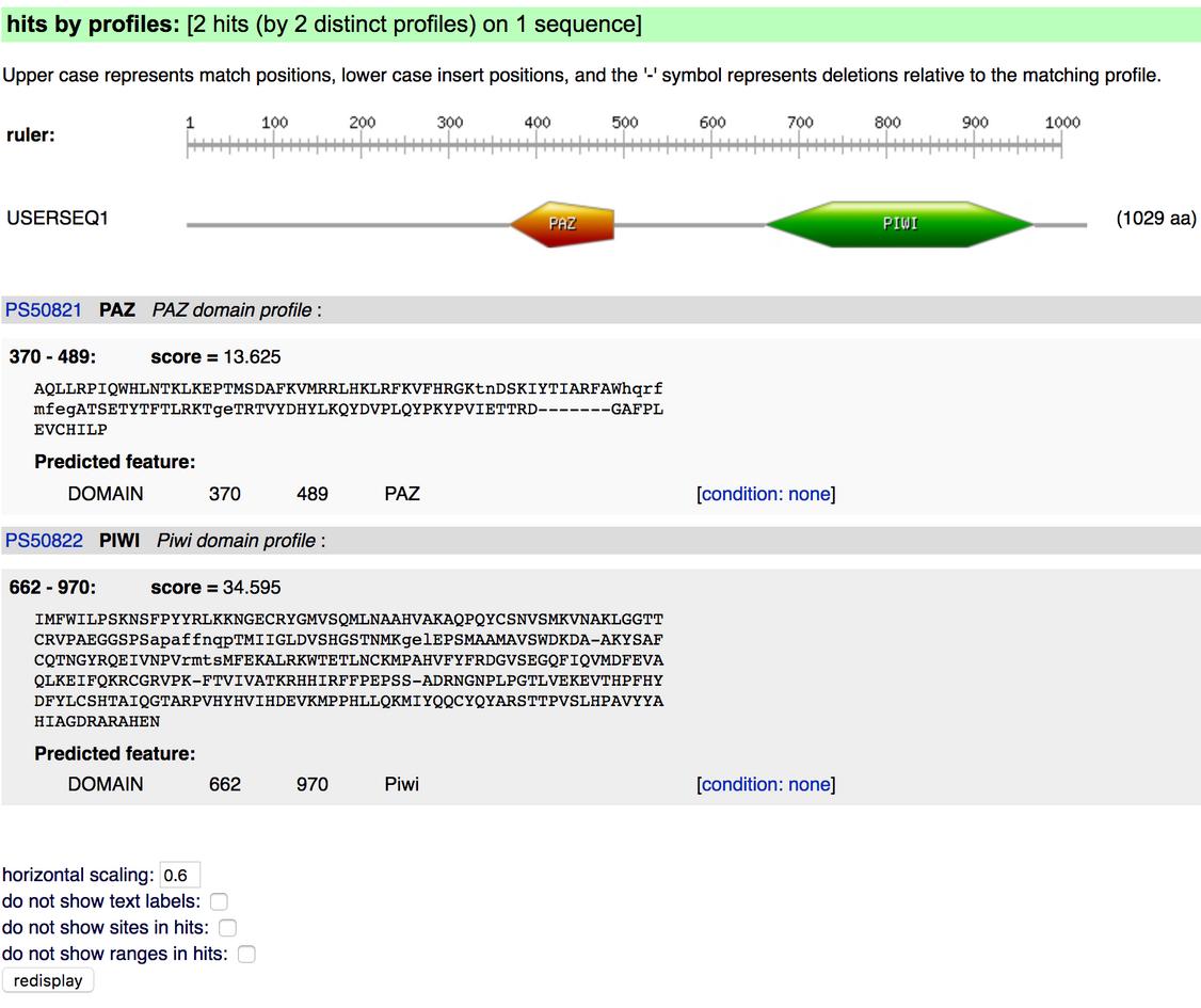 Protein Analysis-Motif Analysis.png