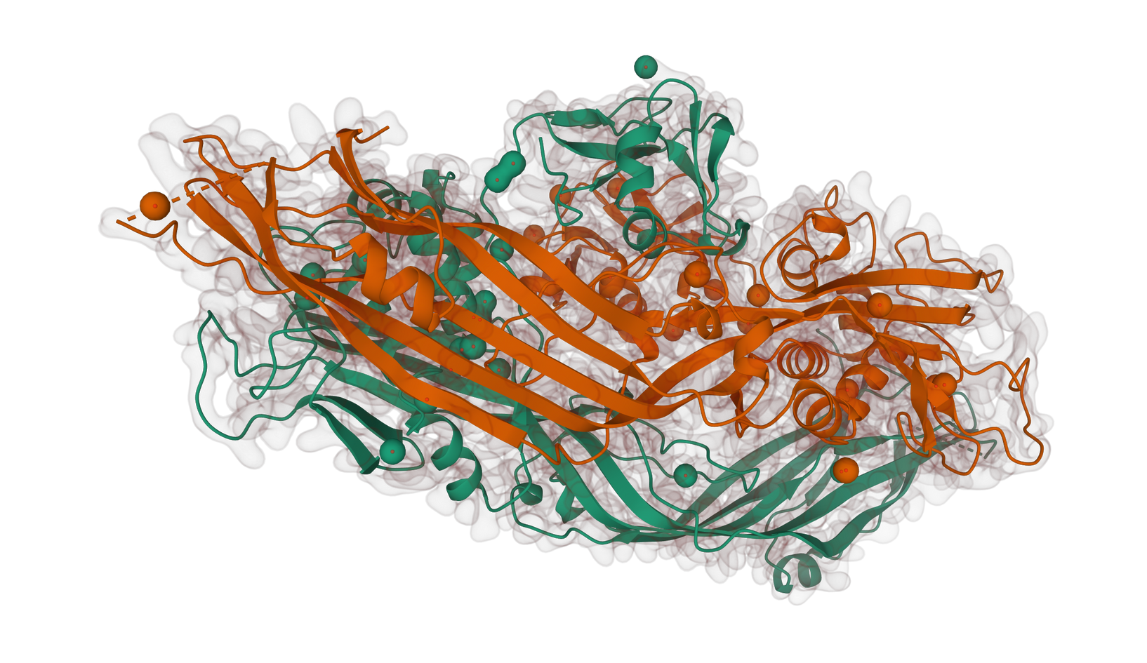 Protein Sructure (1PRE).png