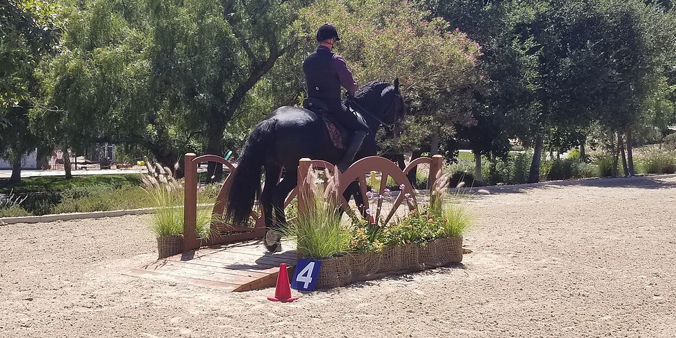 ECF Spring B-Rated Working Equitation Show #2