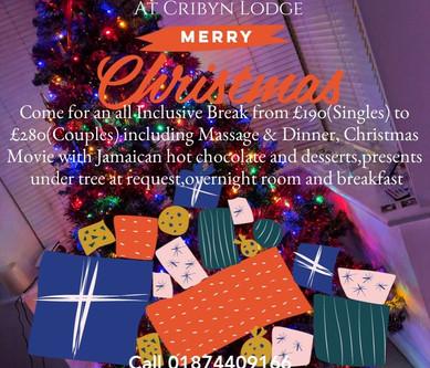 Christmas Starts 20th November at Cribyn Lodge