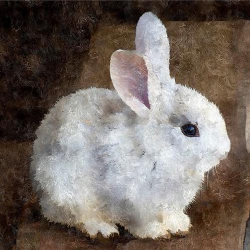 Diamond Dot Painting - Bunny