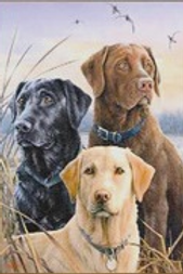 Diamond Dot Painting - Labradors