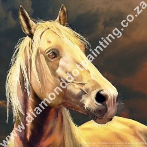 Diamond Dot Painting - Tawny Stallion