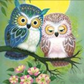 Diamond Dot Painting - Mr & Mrs Owl
