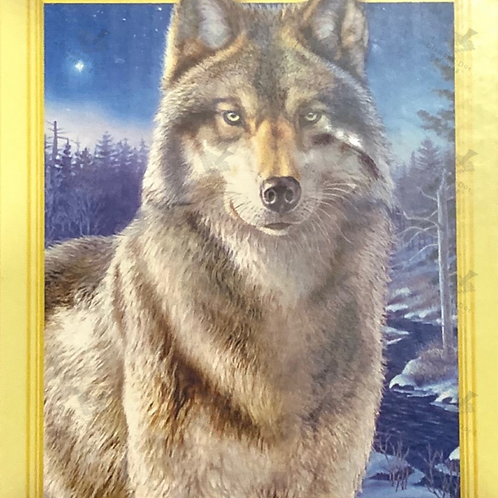 Diamond Dot Painting - Wolf