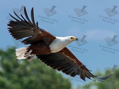 Diamond Dot Painting - Flight of the Fish Eagle