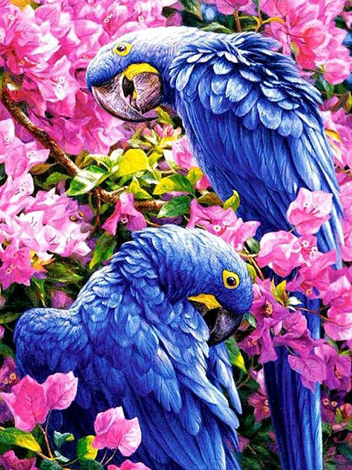 Diamond Dot Painting - Blue Parrots in Pink