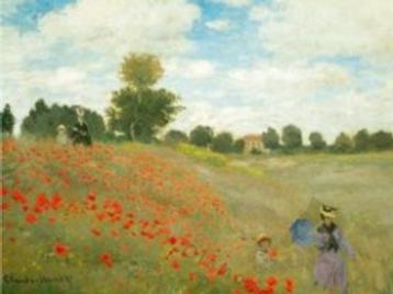 Diamond Dot Painting - Field of Poppies