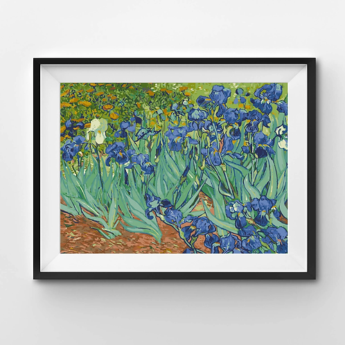 Irises - Paint By Numbers