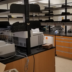 Lab early days