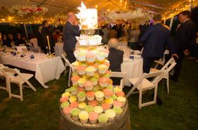 Wedding Cake with Cupcakes