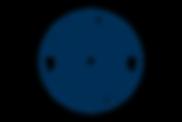 BGD_Icon_Solid_Pantone 7463U.png