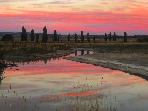 Country Lake Sunset