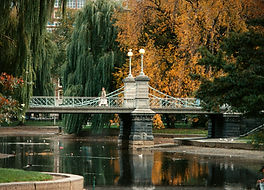 Boston_Public_Garden_Suspbridge.jpg