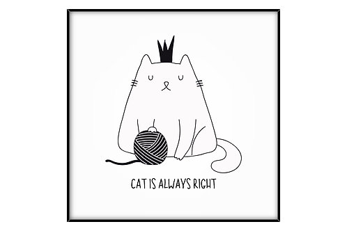 Cat is Always Right