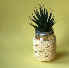 Mason Jar Snugs