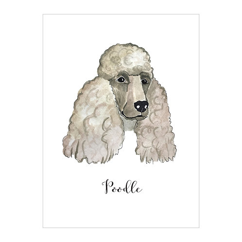 Poodle Notecard