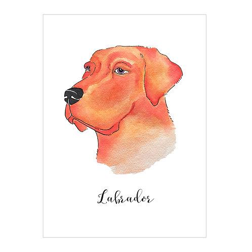 Labrador Notecard