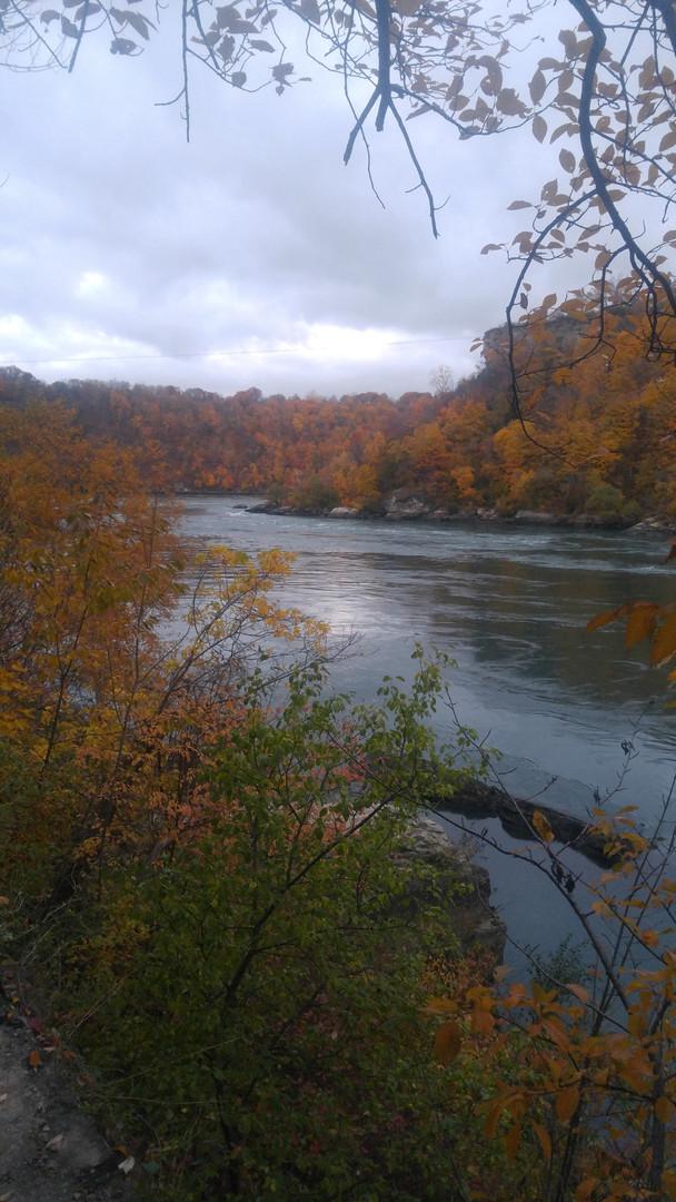 Lower Niagara River Fly Fishing Tours
