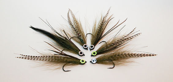 Queen City Guiding_Fly Fishing Flies Wor