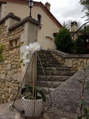 Les escaliers pour accéder aux terrasses