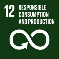 TheGlobalGoals_Icons_Black_Goal_12.png