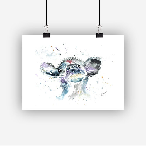 Cheeky Cow Print