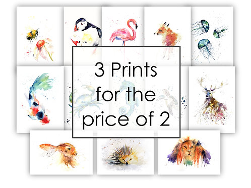 3 Prints for the price of 2