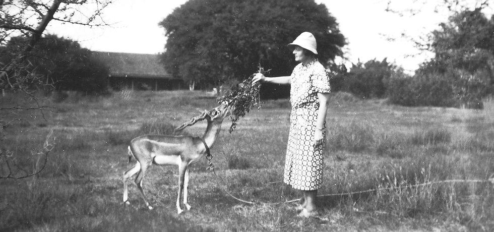 mn6633p-Elizabeth with gazelle.jpg
