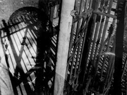 Caged Dreams 1995
