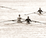 Scullers Head.png