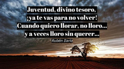 frases-escritores-DVVqH0fW0AA3-ft