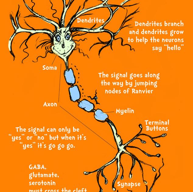 Dr Seuss Neuron