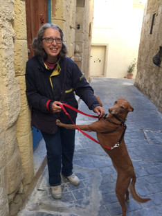 Neighbor with her rescued Kelb tal-Fenek (National dog of Malta)