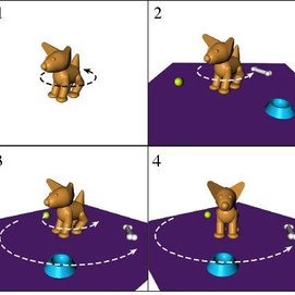 """""""Smooth Dog"""" stimuli for motion perception experiments"""