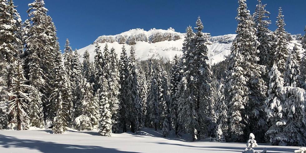 Sortida amb Raquetes de neu a  Peter Grubb Hut, Soda Springs