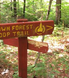 Trail Sign Damage