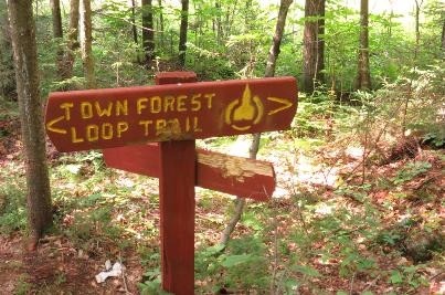Trail Sign Damage