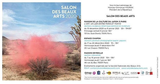 Salon des Beaux Arts 2020.jpeg